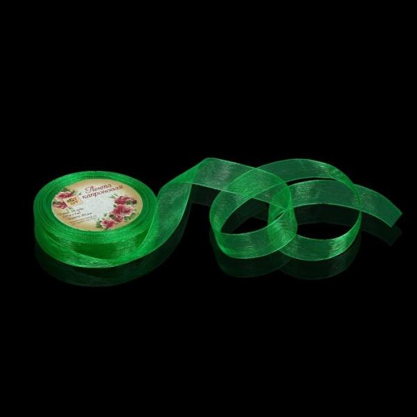 Лента капроновая, 20мм, 20±1м, №19, цвет зелёный
