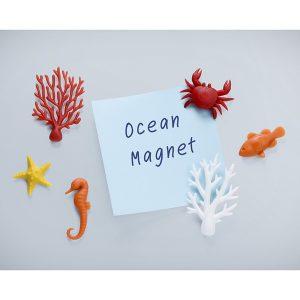 Набор из 6 магнитов «Ocean...