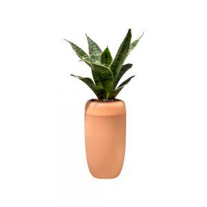 Горшок для растений с самополивом...